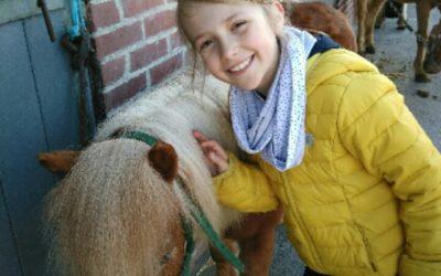 les CE1a au poney