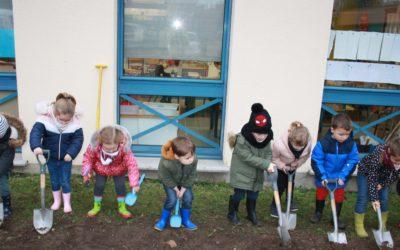 Nouvelle parcelle de fleurs sauvages à l'école: