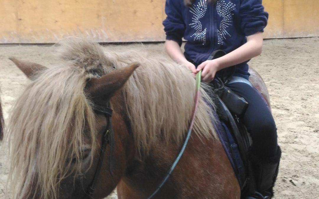 Les CE1 a au poney club